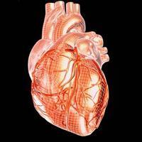 Сердца картинки нарисованные 4