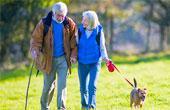 Изменение прочности костей с возрастом