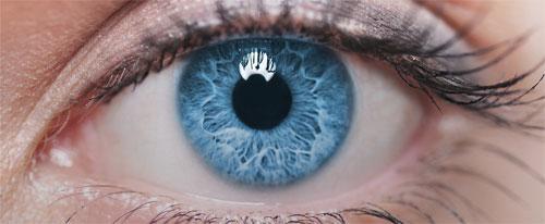 Дальнозоркость и близорукость: описание, симптоматика и профилактика