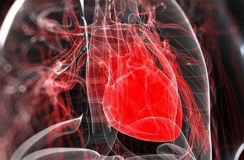 Причины заболеваний сердца и легких