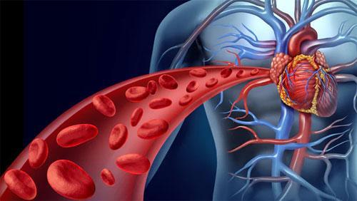 Какие существуют методы лечения тромба в сердце?