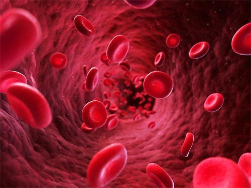 Лечение дисфункции крови