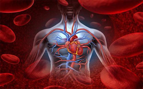 болезнь коронарной артерии