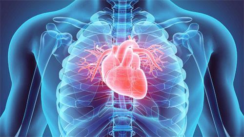 Современные и проверенные способы диагностики сердечнососудистых заболеваний