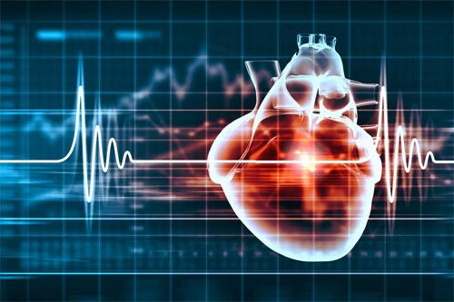 Стероиды и сердечно-сосудистые проблемы