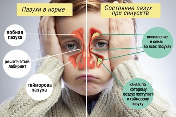 Главный источник здоровья: где искать медицинскую информацию?
