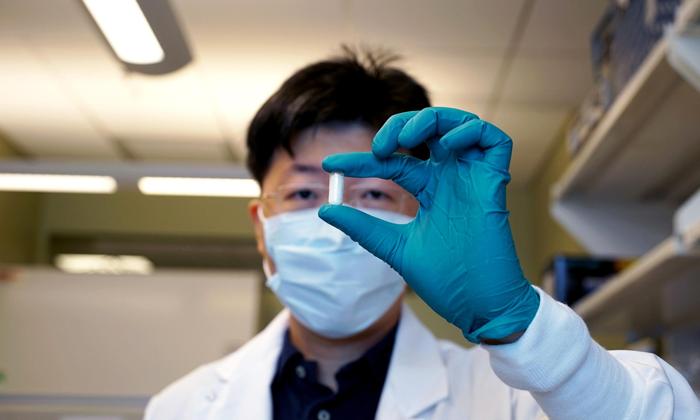 Разрабатывается синтетическое покрытие для кишечника, которое может блокировать абсорбцию глюкозы
